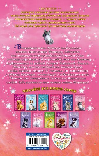 Волшебный пони, или Сверкающие следы Сью Бентли