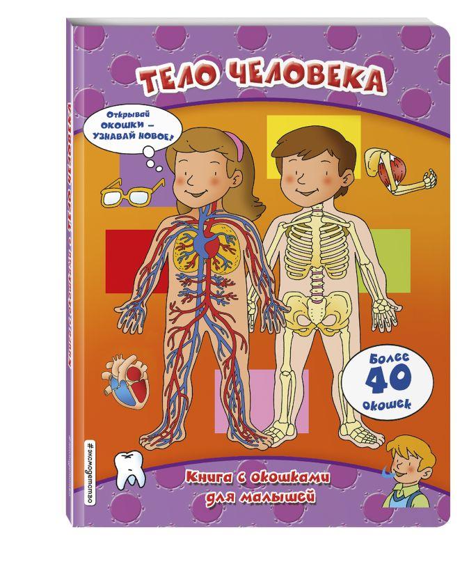 Тело человека (книги с окошками)