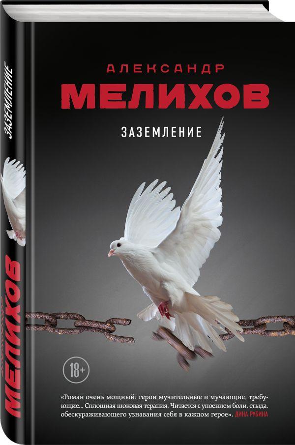 Заземление Александр Мелихов