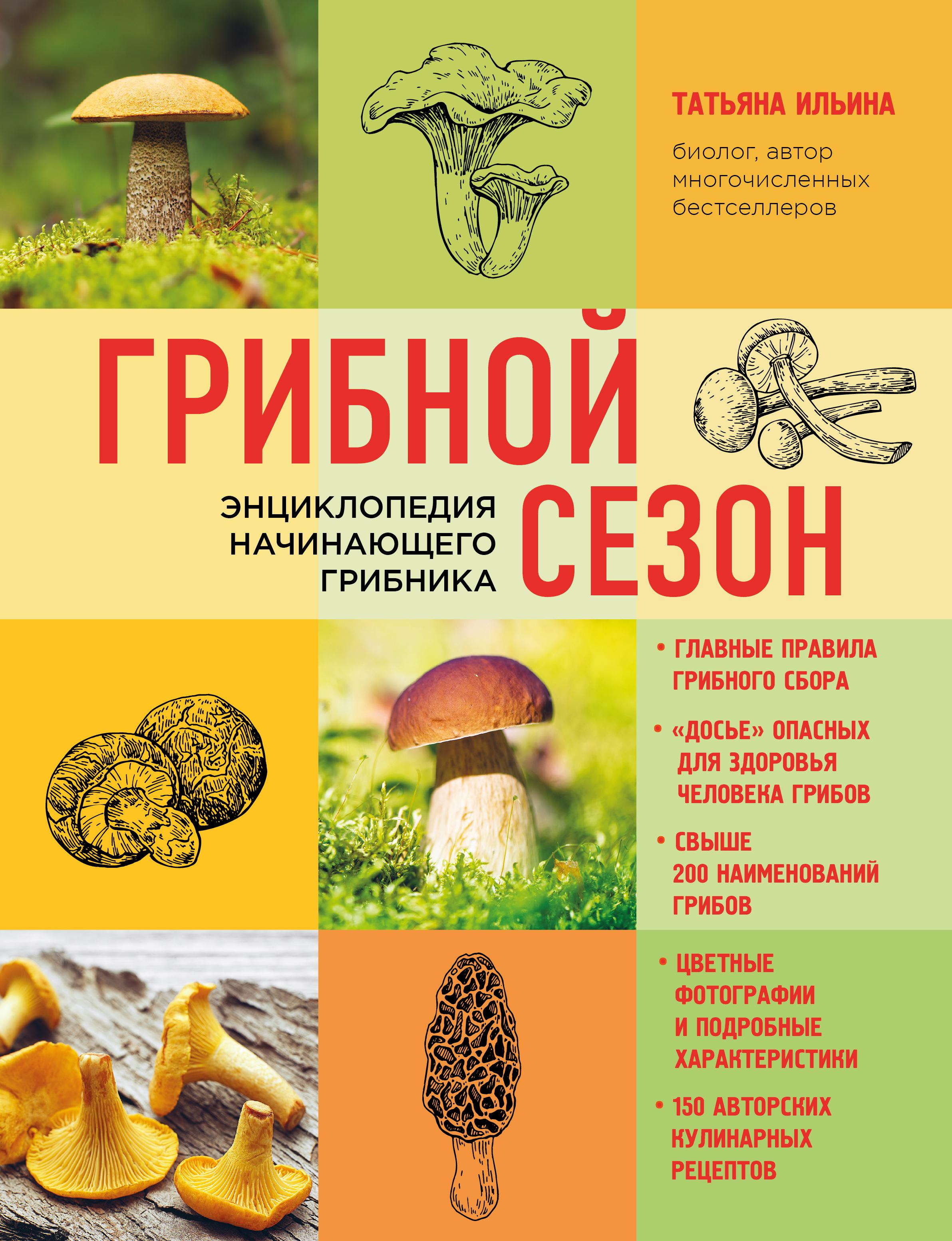 Грибной сезон. Энциклопедия начинающего грибника (книга в суперобложке)