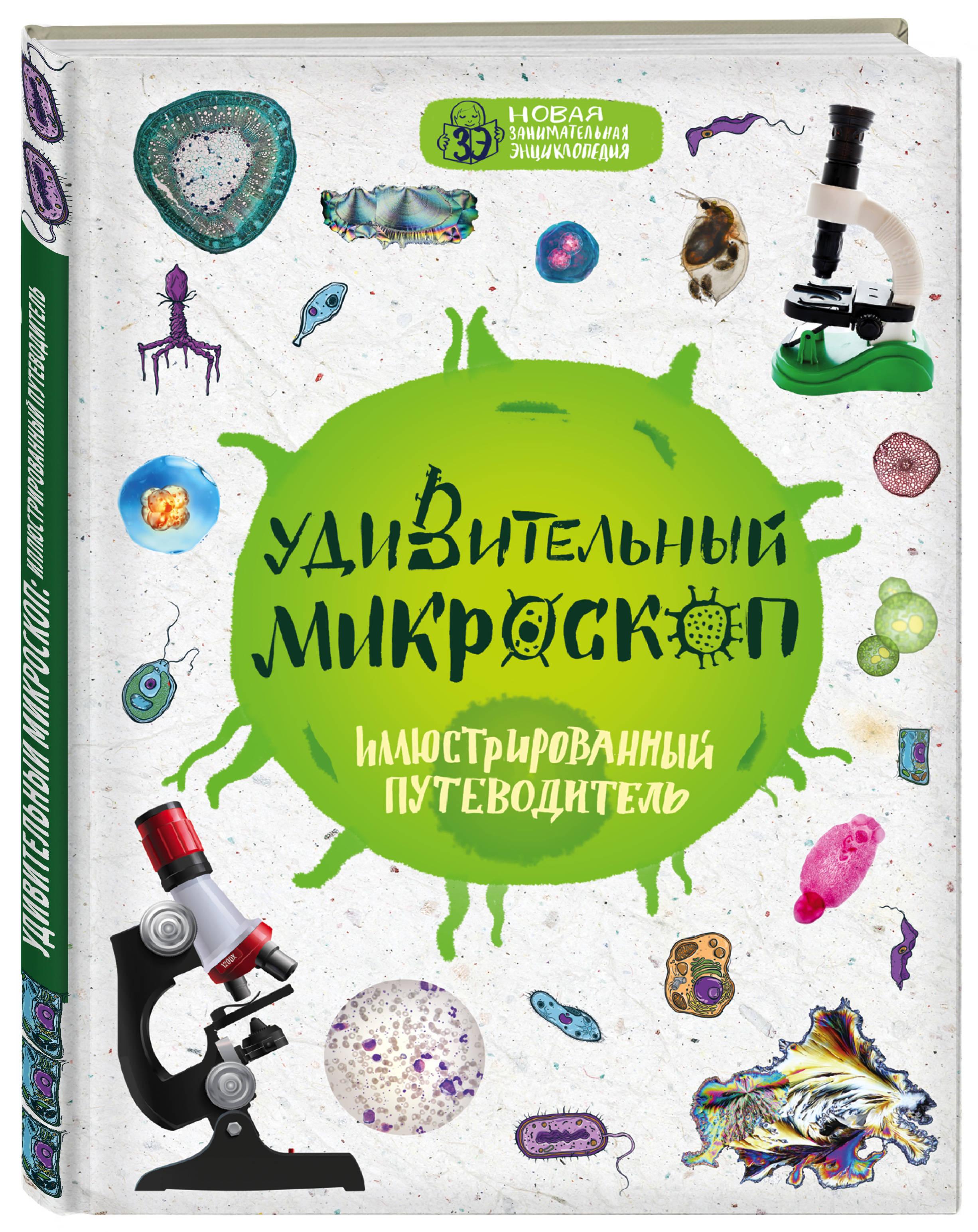 Оксана Мазур Удивительный микроскоп: иллюстрированный путеводитель