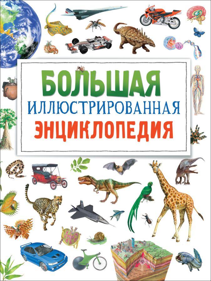 Большая иллюстрированная энциклопедия (нов.) Бромаж Ф.