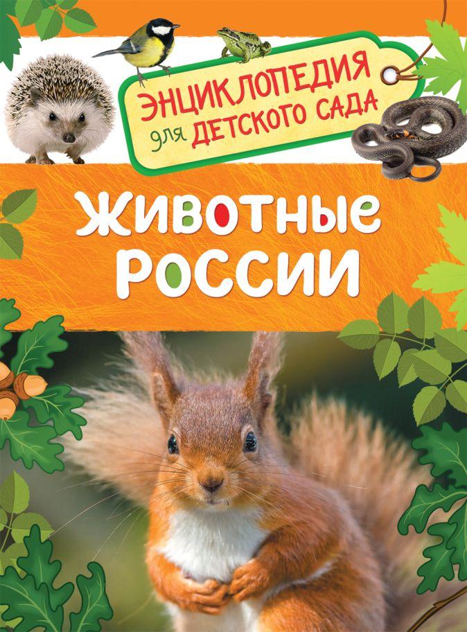 Травина И. В. - Животные России (Энциклопедия для детского сада) обложка книги