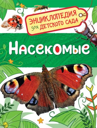 Клюшник Л. В. - Насекомые (Энциклопедия для детского сада) обложка книги