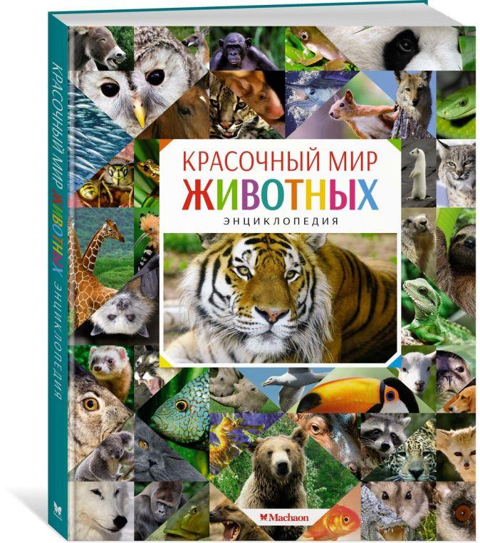 Красочный мир животных. Энциклопедия