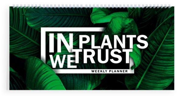 Мини-планер. In PLANTS we trust