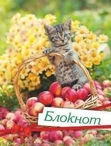 Блокнот (с изображением кошки)