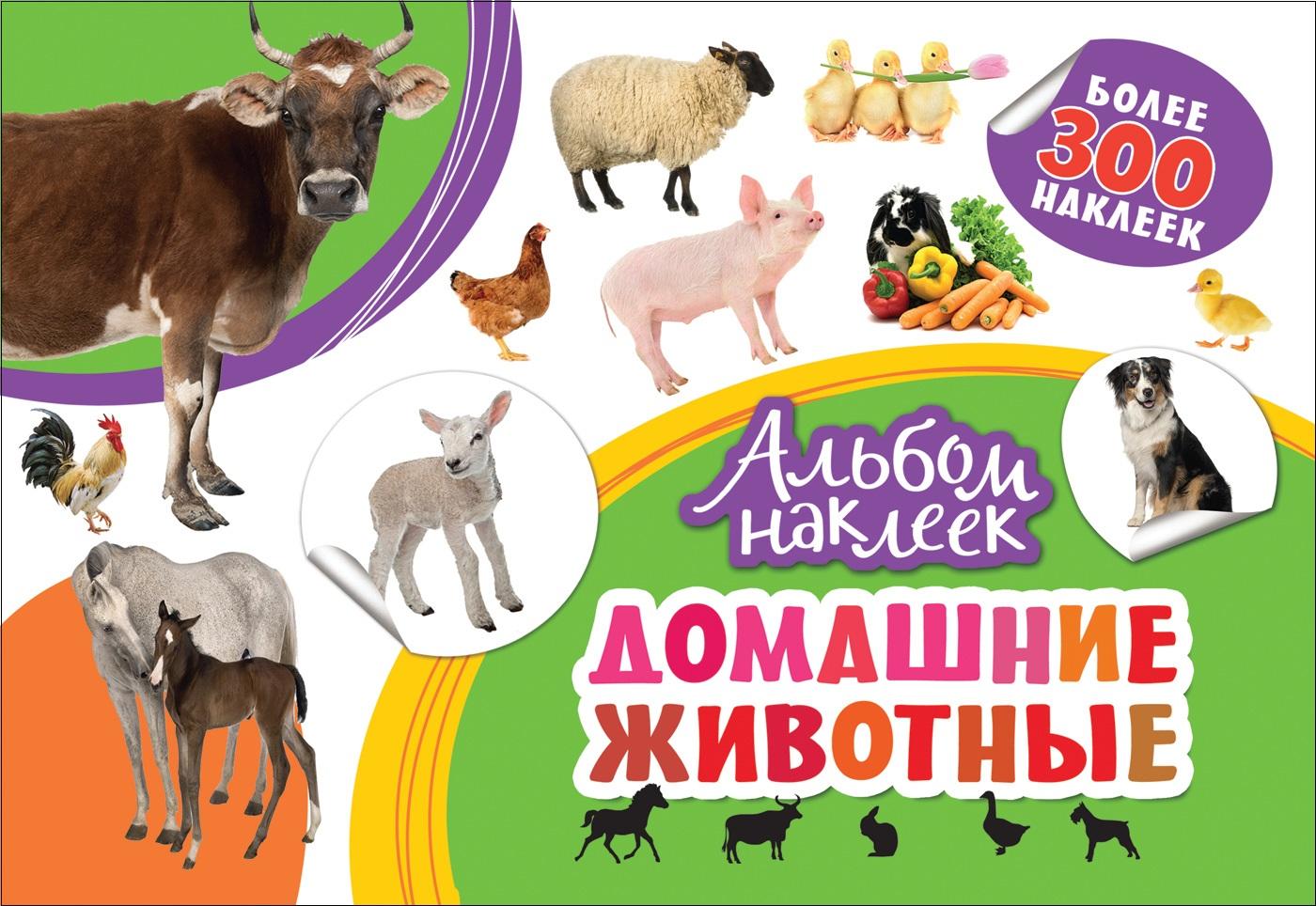Котятова Н. И. Альбом наклеек. Домашние животные тоня виатровски сделай свою книгу
