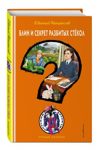 Блин и секрет разбитых стёкол Евгений Некрасов