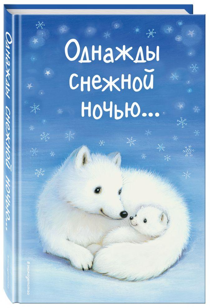 Холли Вебб и др. - Однажды снежной ночью... (выпуск 4) обложка книги