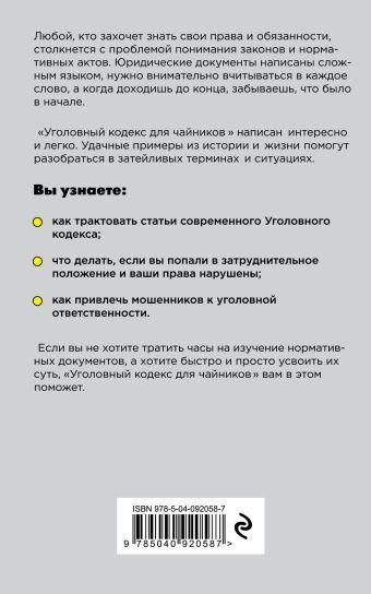 Уголовный кодекс для чайников. 3-е издание. Дополненное Дмитрий Усольцев