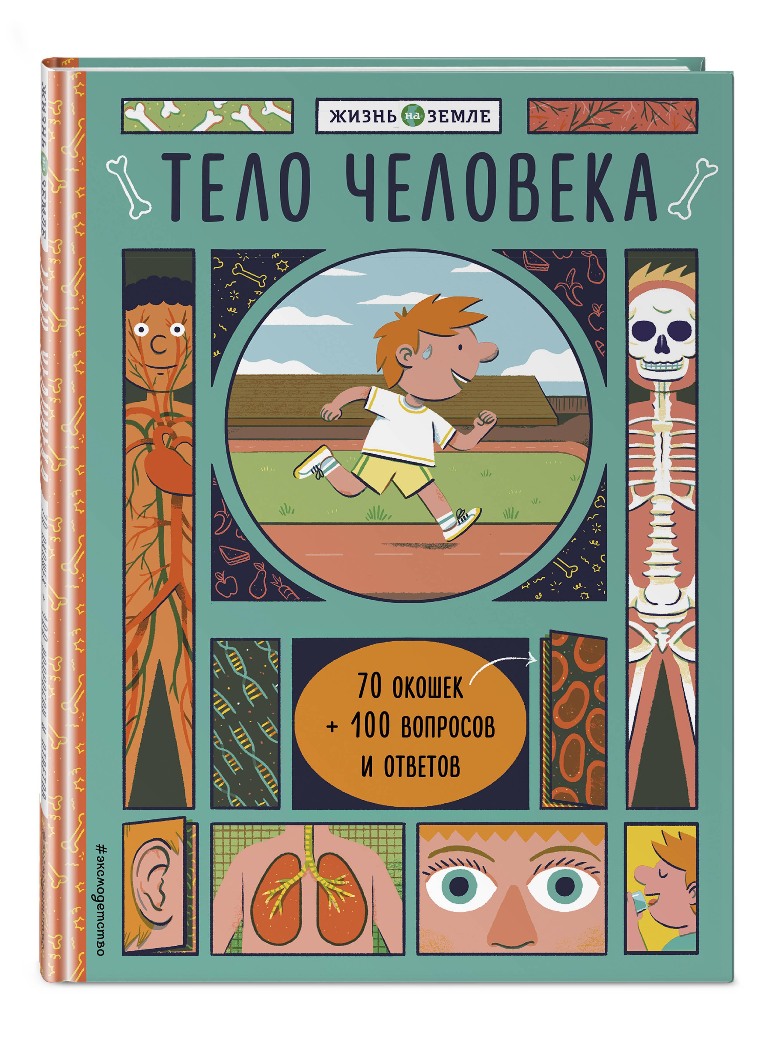Травина И.В. Тело человека (с окошками) ирина травина тело человека