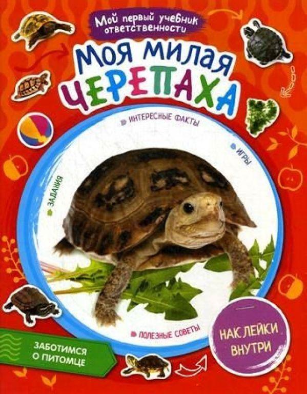интересно Моя милая черепаха +  наклейки внутри книга