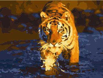 Раскраски по номерам на картоне. Тигр в воде - раскраски по номерам на картоне (KS022)