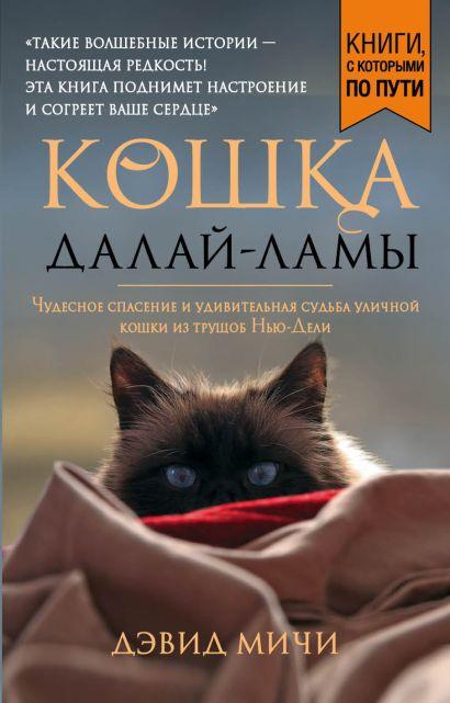 Кошка Далай-Ламы. Чудесное спасение и удивительная судьба уличной кошки из трущоб Нью-Дели (покет для новой серии) - фото 1
