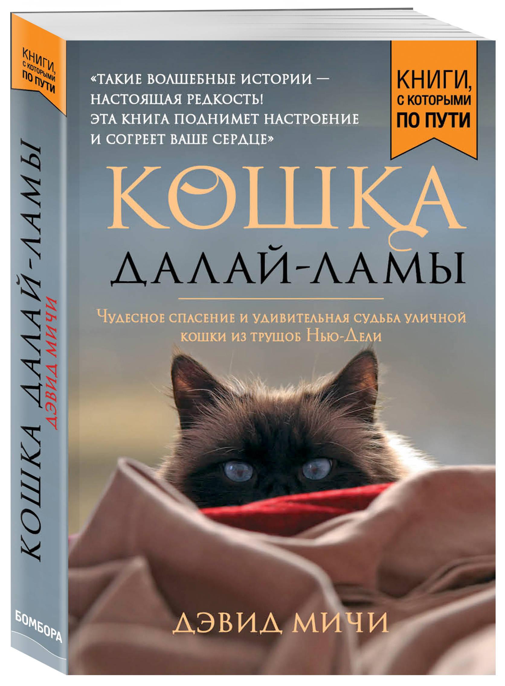 Кошка Далай-Ламы. Чудесное спасение и удивительная судьба уличной кошки из трущоб Нью-Дели (покет для новой серии)
