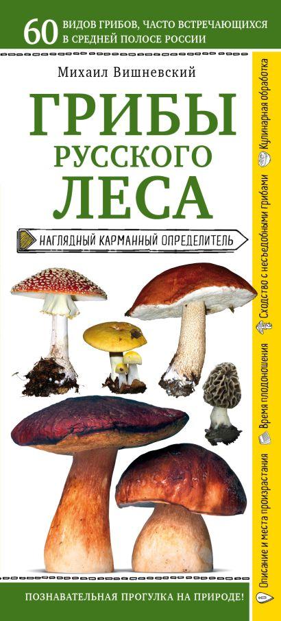 Грибы русского леса. Наглядный карманный определитель - фото 1