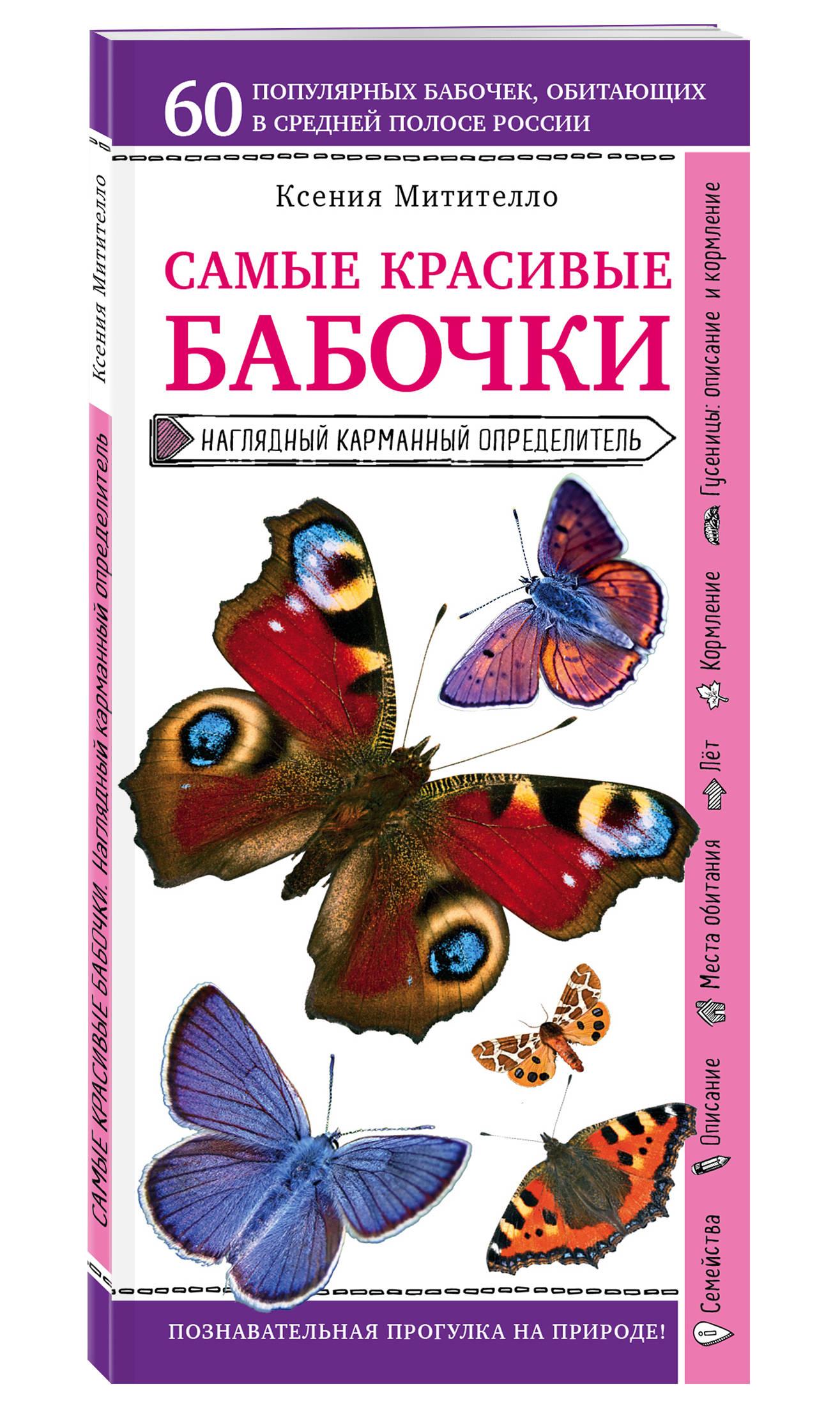 Фото - Ксения Митителло Бабочки. Наглядный карманный определитель митителло к бабочки наглядный карманный определитель