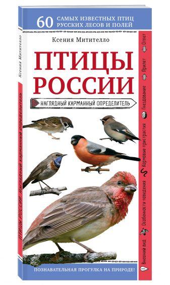 Ксения Митителло - Птицы России. Наглядный карманный определитель обложка книги