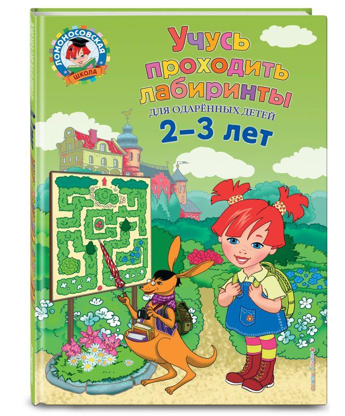 Ю. А. Сафина, Е. А. Родионова - Учусь проходить лабиринты: для детей 2-3 лет обложка книги