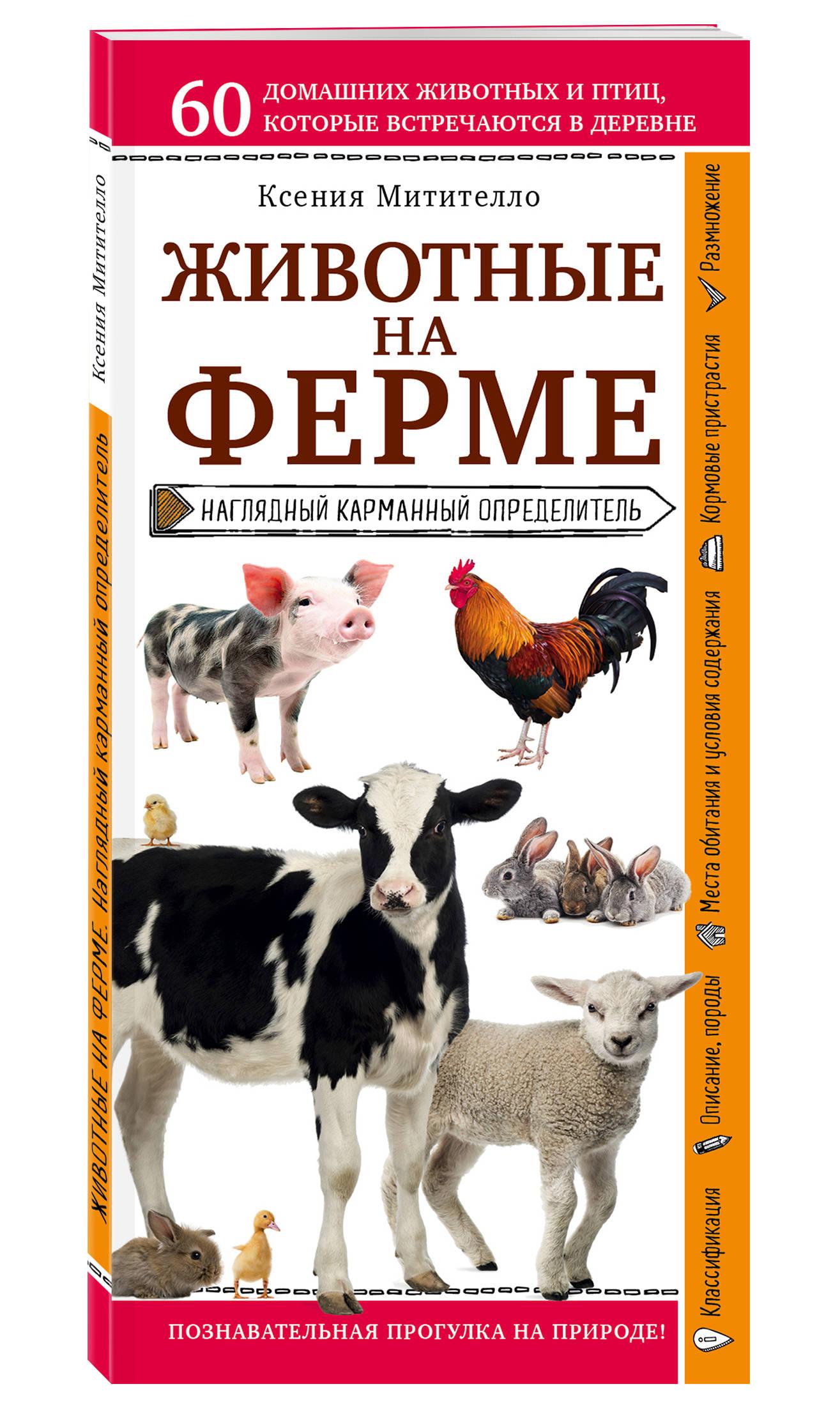 Митителло К.Б. Животные на ферме. Наглядный карманный определитель евгения шульдякова наферме родители и