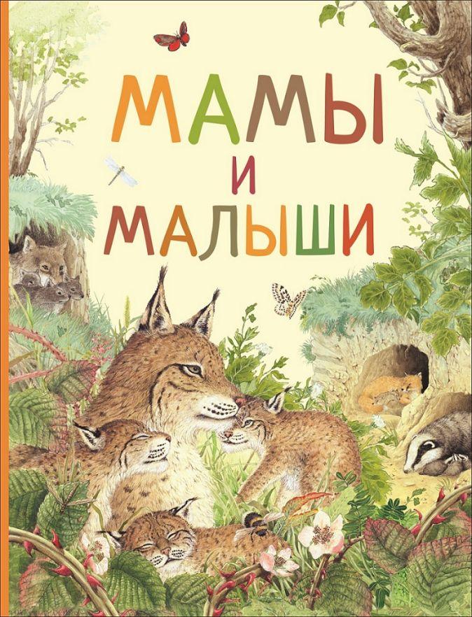 Мамы и малыши (Удивительный мир животных) Ренне