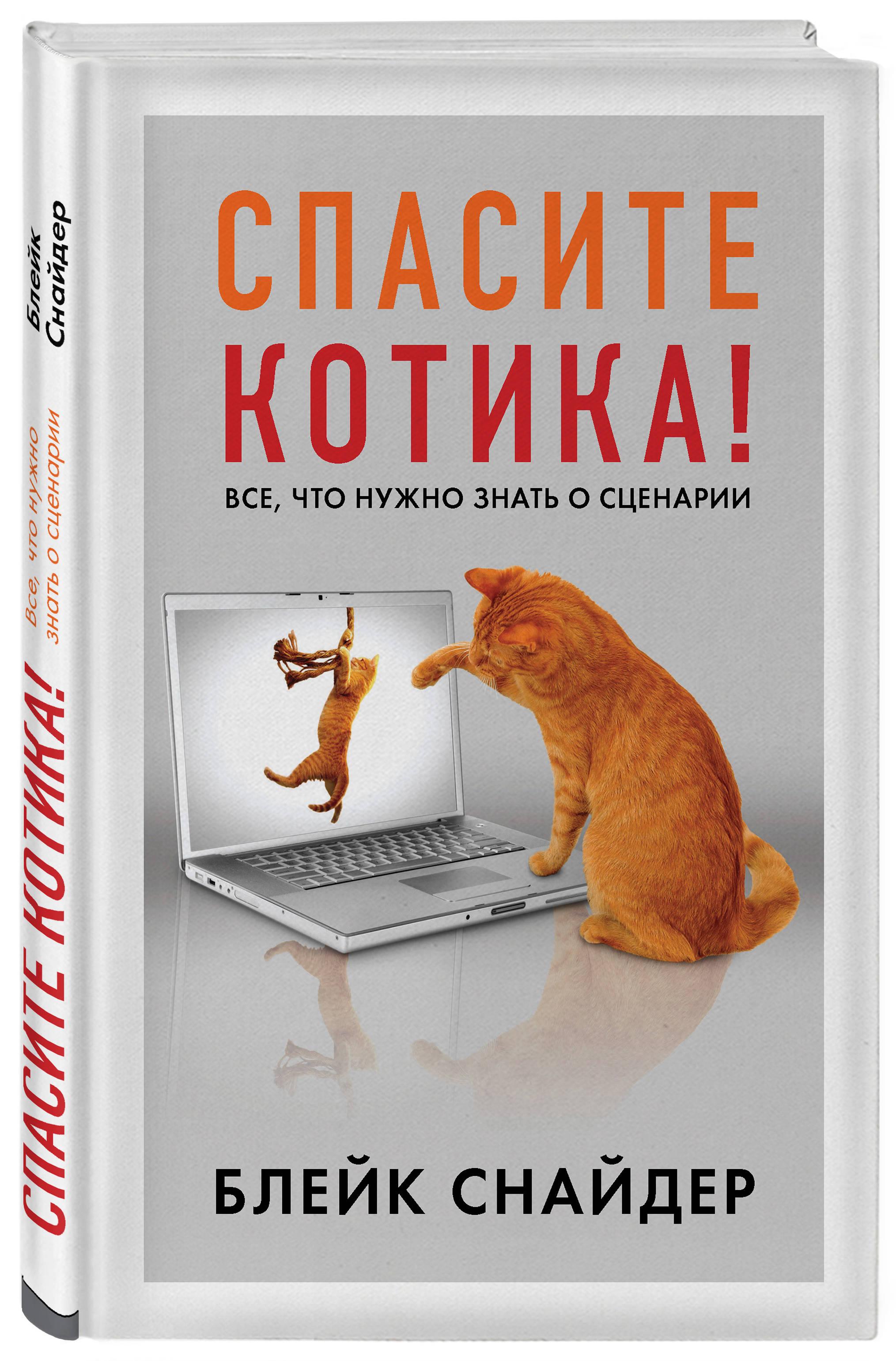 Спасите котика! Все, что нужно знать о сценарии ( Блейк Снайдер  )