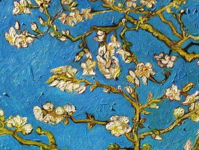 Кардхолдер. Винсент Ван Гог Цветущие ветки миндаля (в форме книжки, 215х65 мм) - фото 1