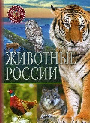 Животные России. (Популярная детская энциклопедия)