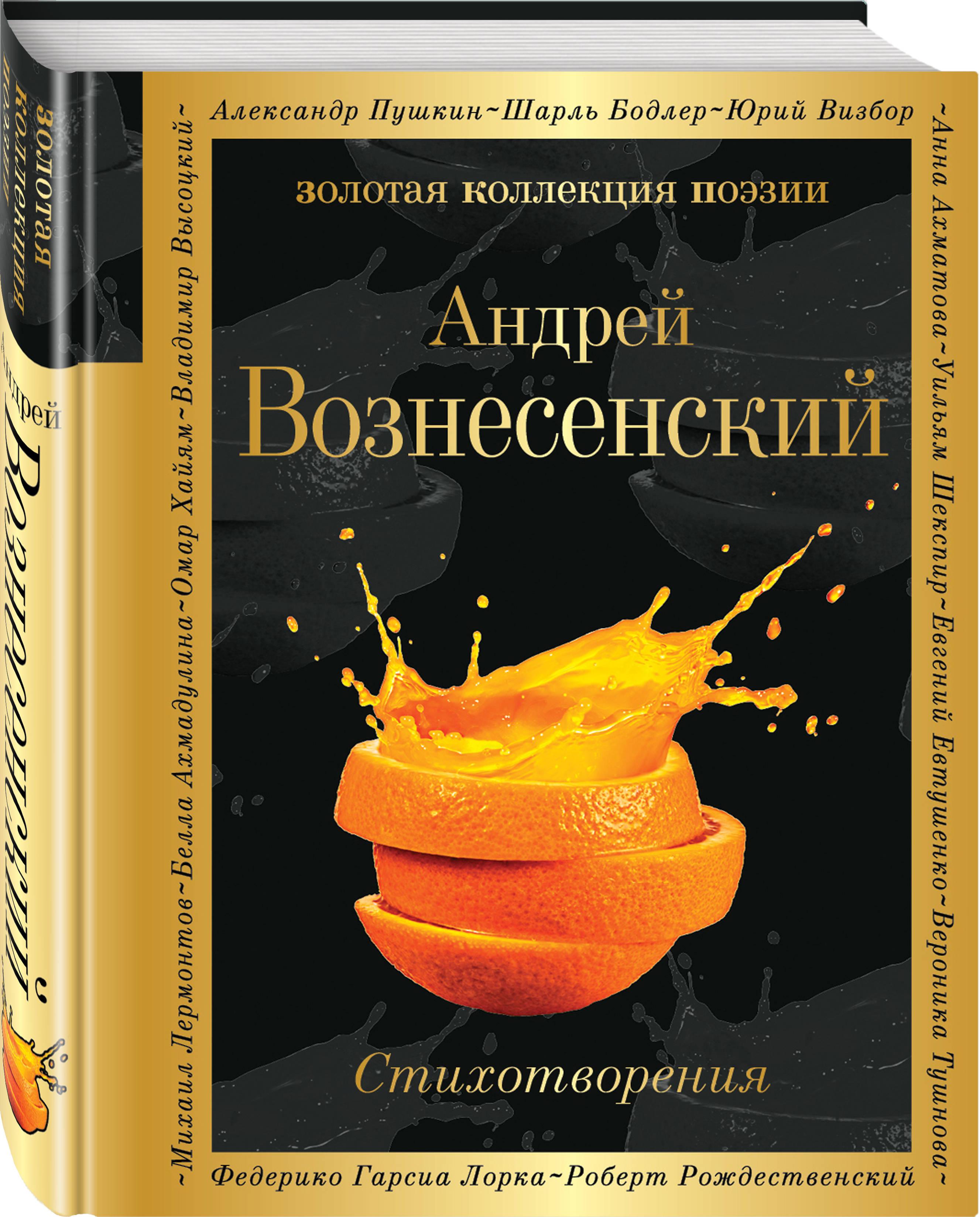 Андрей Вознесенский Стихотворения андрей вознесенский андрей вознесенский тень звука
