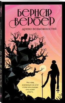 Бесконечная вселенная Бернара Вербера (обложка)