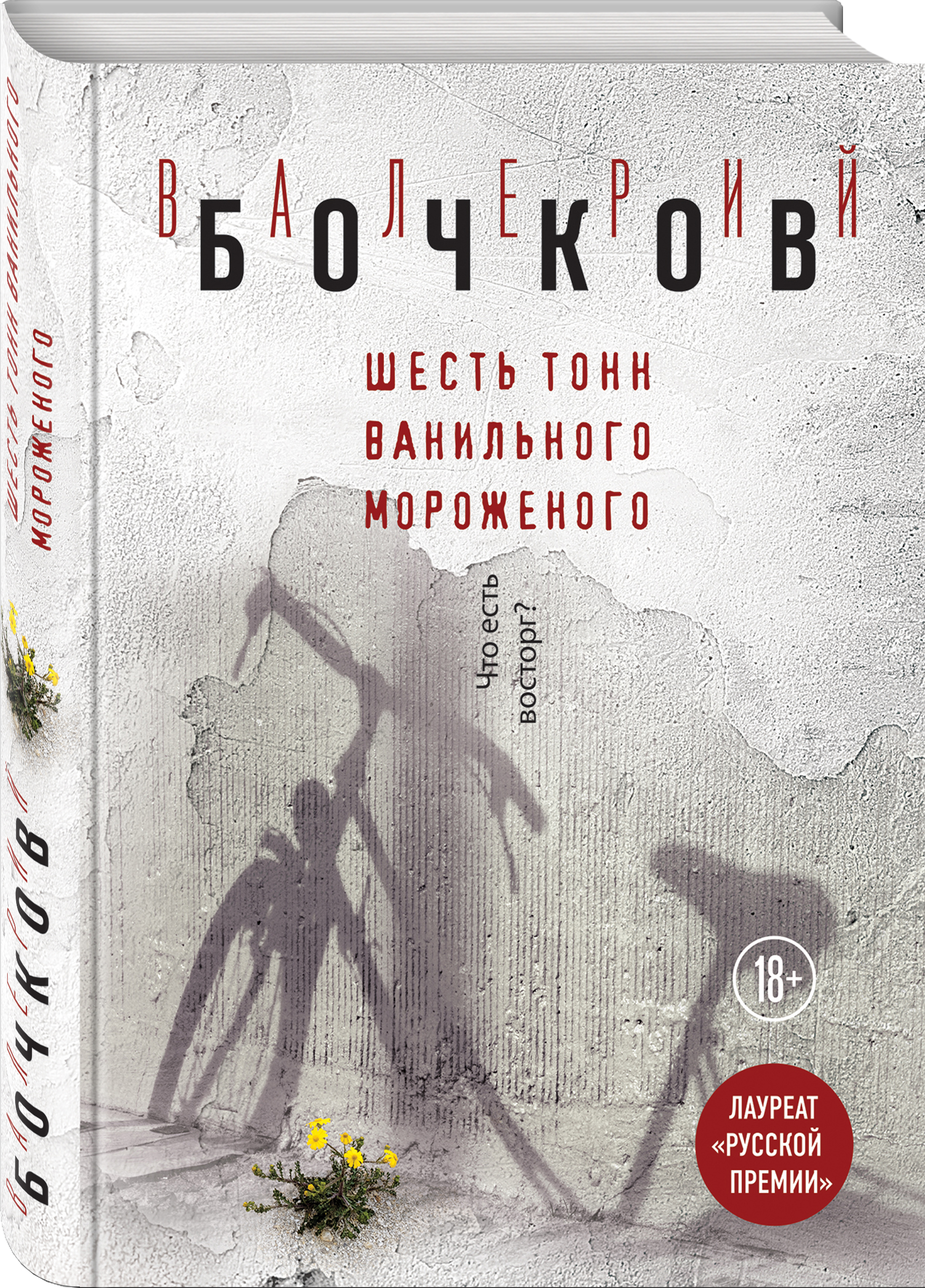 Валерий Бочков Шесть тонн ванильного мороженого
