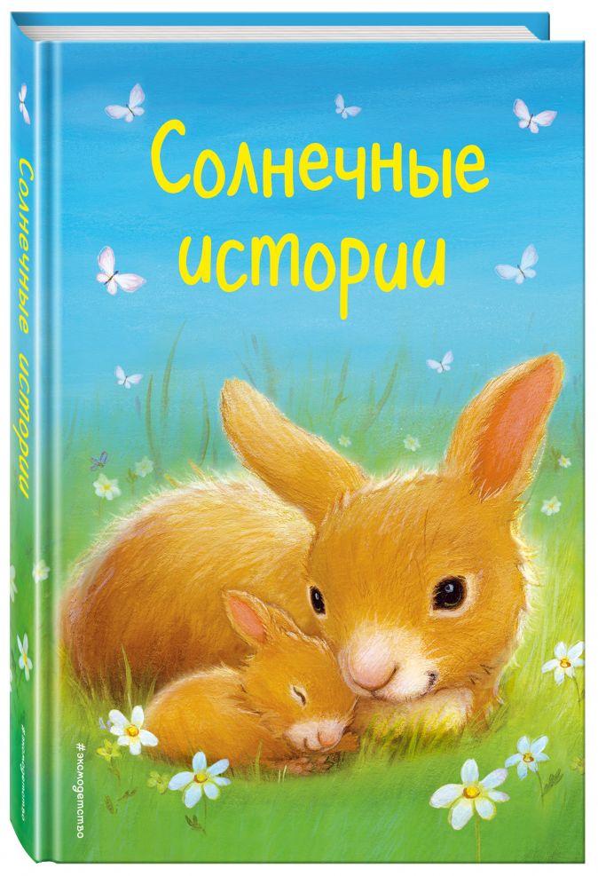 Холли Вебб и др. - Солнечные истории (выпуск 3) обложка книги