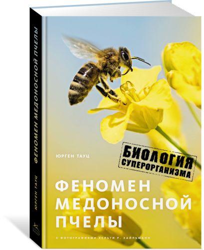Феномен медоносной пчелы. Биология суперорганизма - фото 1