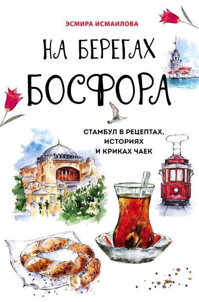 На берегах Босфора. Стамбул в рецептах, историях и криках чаек - фото 1