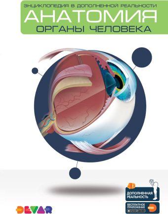 Энциклопедия в дополненной реальности «Анатомия:органы человека»