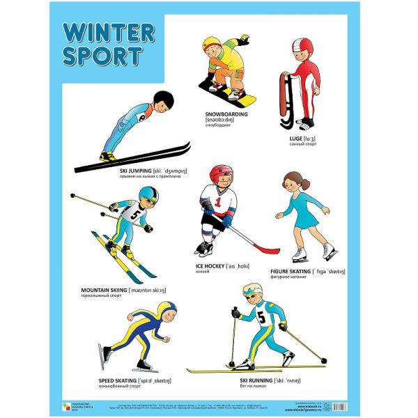 Плакаты (англ). Winter Sport (Зимние виды спорта)