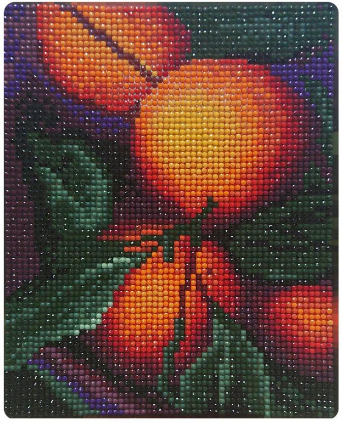 Алмазная картина 17х21. Апельсиновый аромат-алмазная картина (MP004)