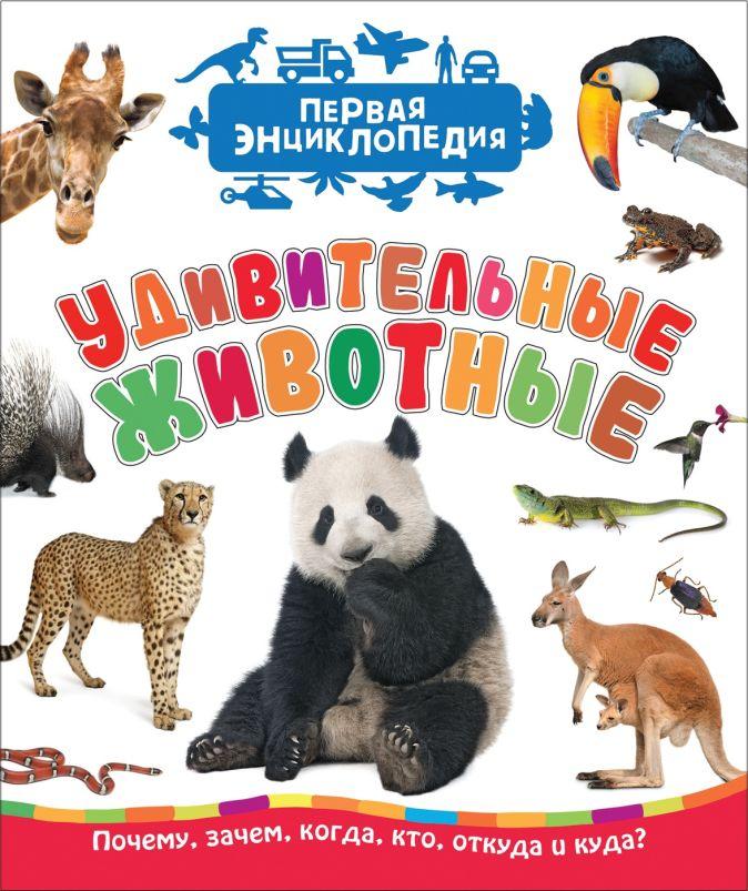Удивительные животные (Первая энциклопедия) Клюшник Л. В.