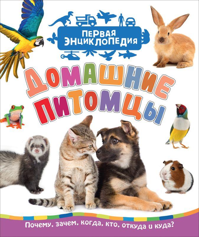 Домашние питомцы (Первая энциклопедия) Гальцева С. Н.