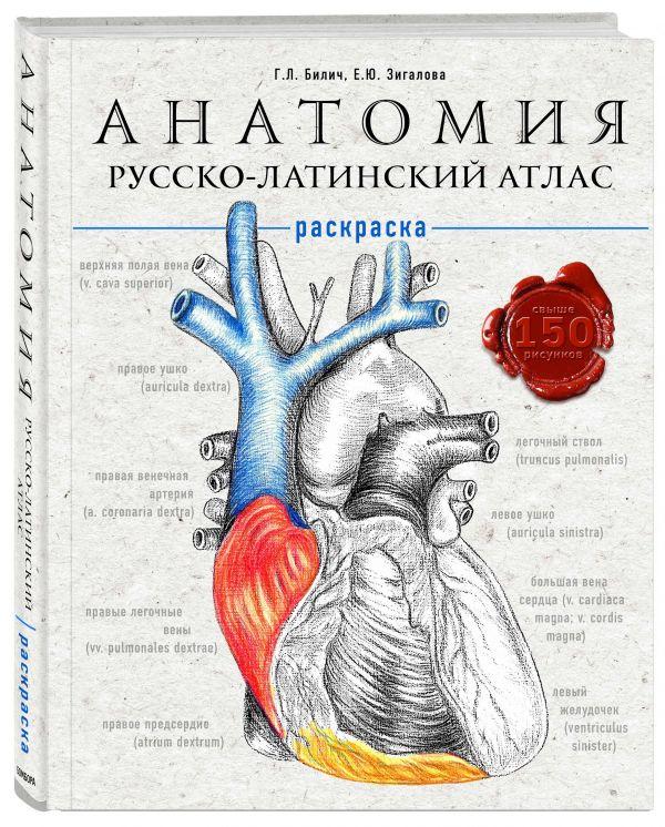 интересно Анатомия: русско-латинский атлас-раскраска книга