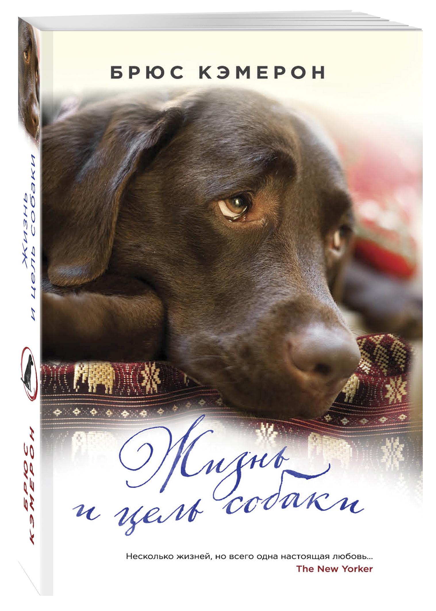 Кэмерон Б. Жизнь и цель собаки для собаки дом