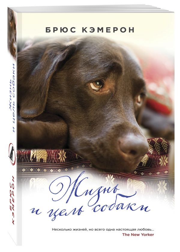 читать книгу жизнь и цель собаки