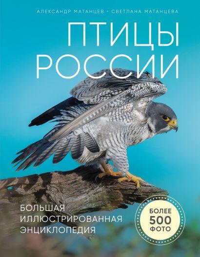 Птицы России. Большая иллюстрированная энциклопедия - фото 1