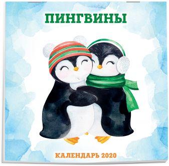 Пингвины. Календарь настенный на 2020 год (300х300 мм)