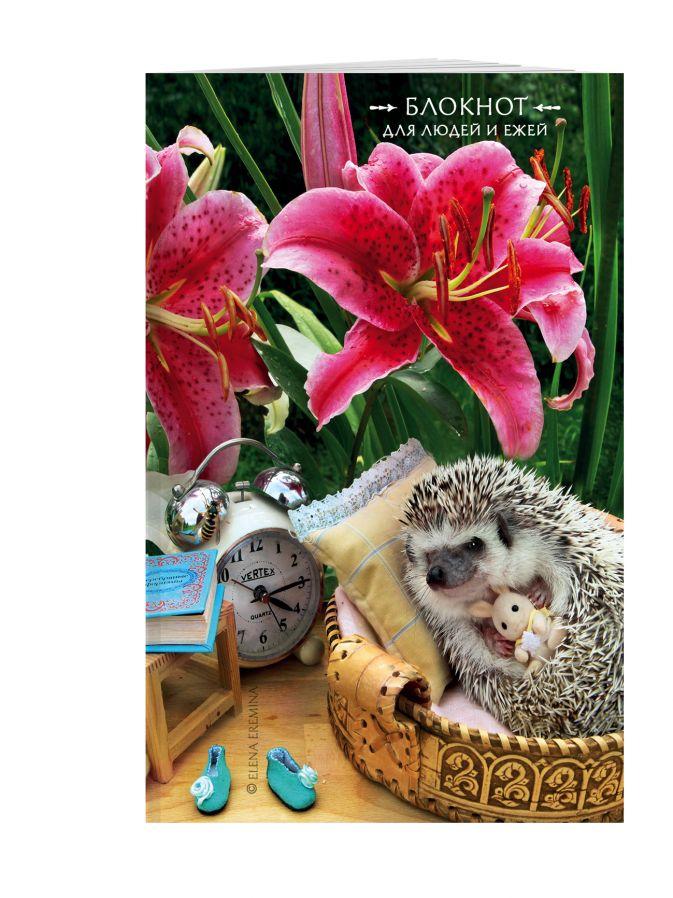 Елена Еремина - Блокнот для людей и ежей (лилии). 115х180мм, мягкая обложка, 64стр. обложка книги