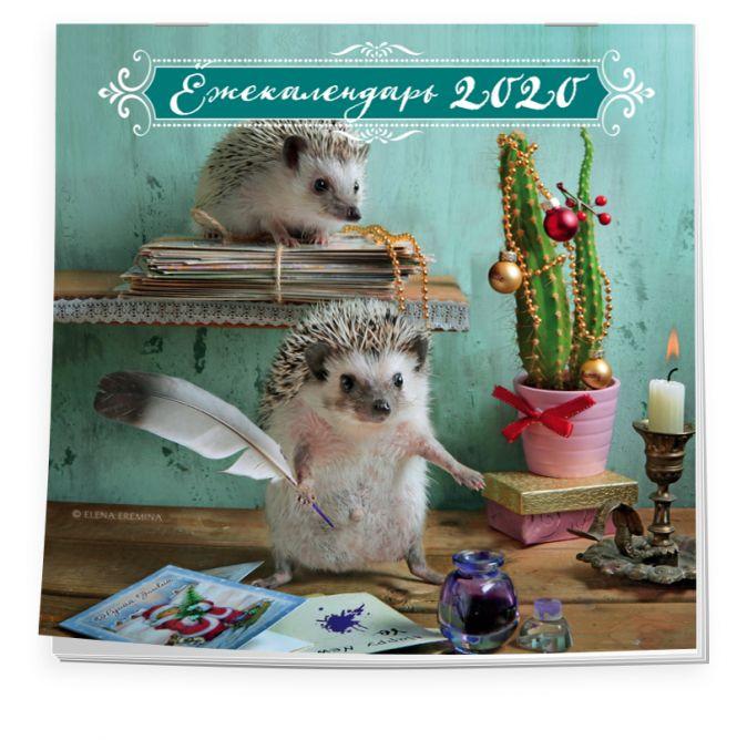 Елена Еремина - Ёжекалендарь (письмо Санте). Календарь настенный на 2020 год (300х300 мм) обложка книги