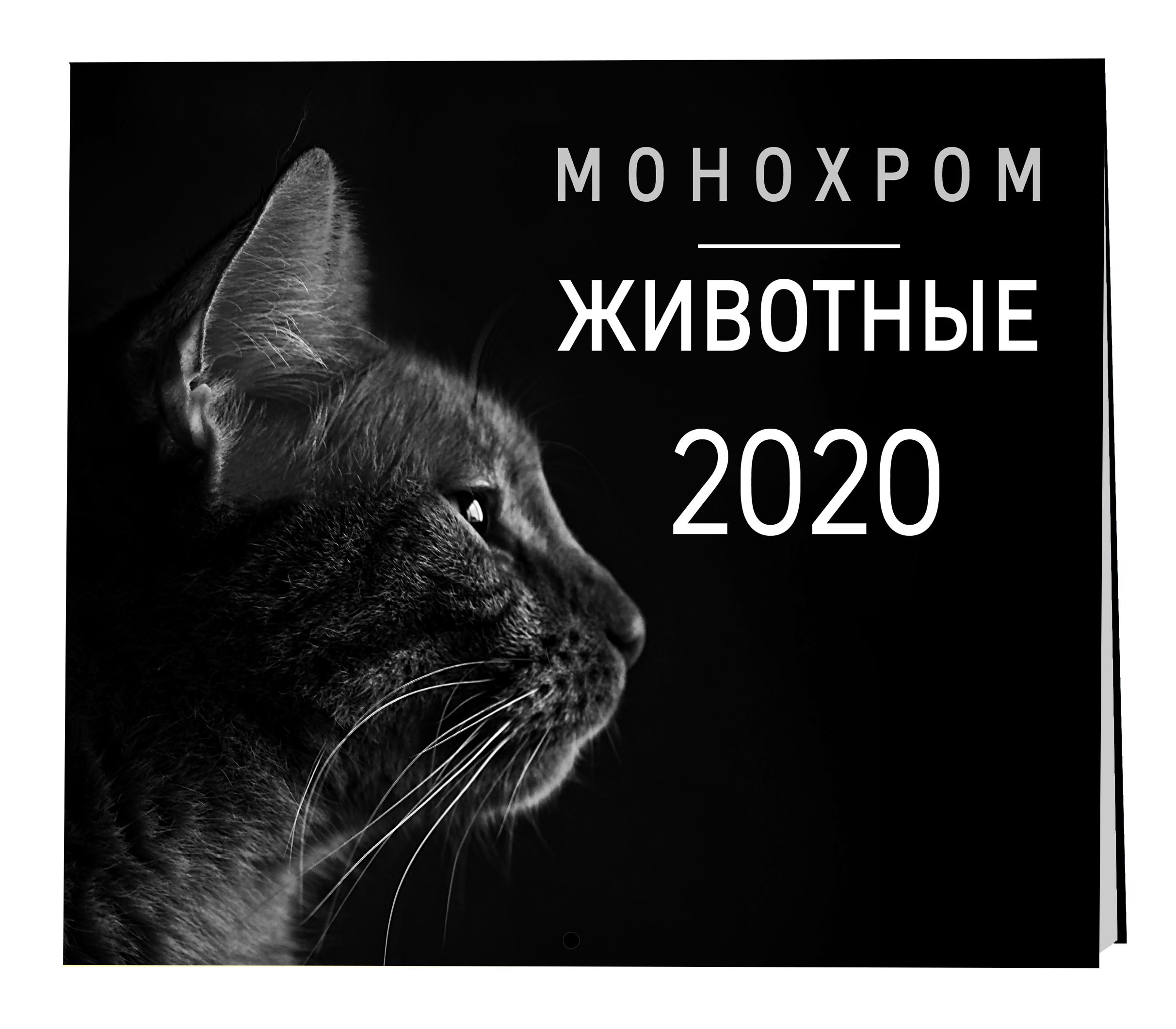 Монохром. Животные. Календарь настенный на 2020 год (300х300 мм)