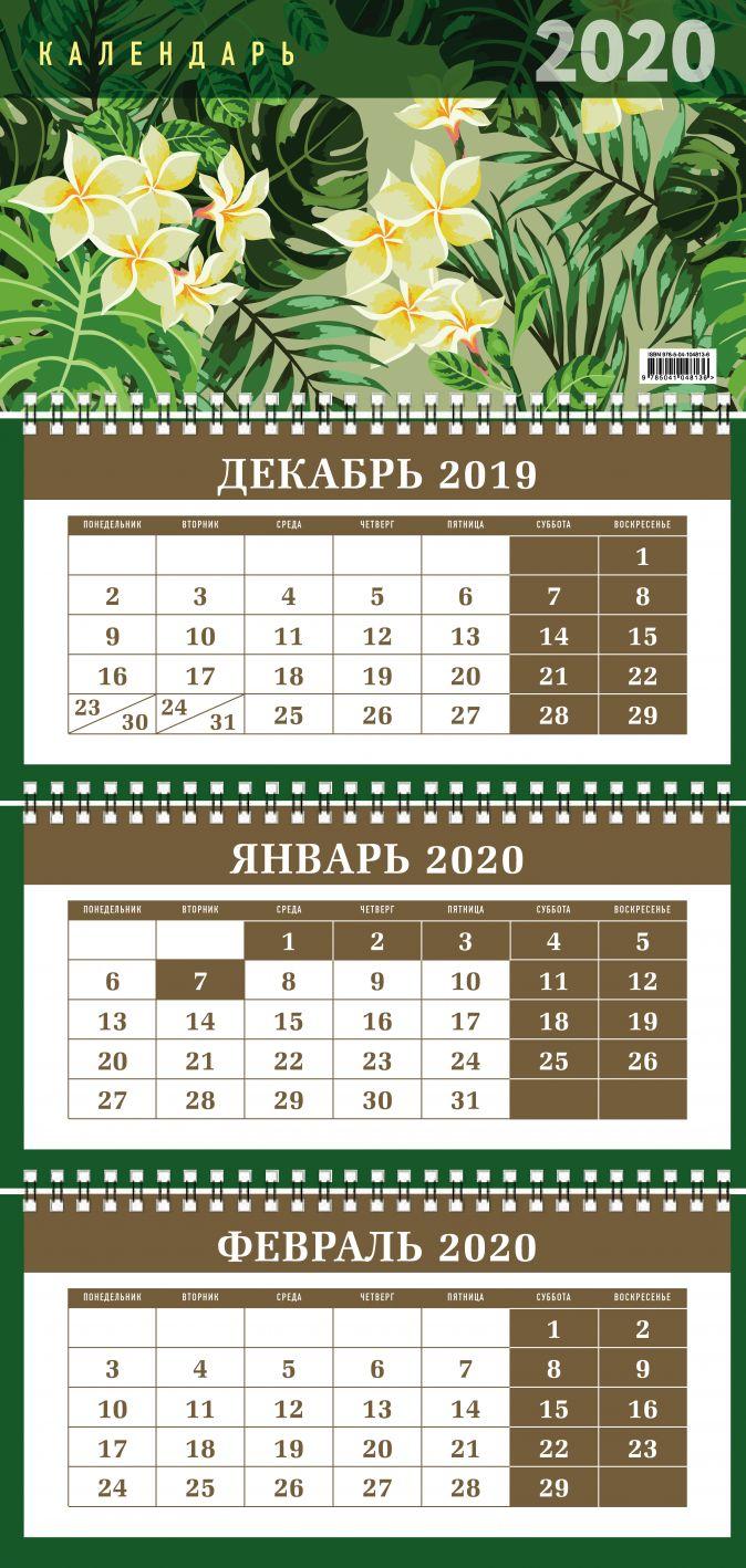 Ботаника. Календарь настенный трехблочный на 2020 год (380х765 мм)