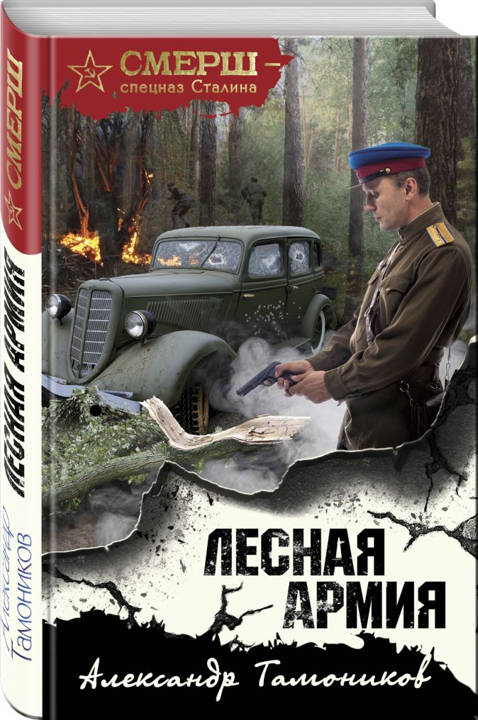 Лесная армия Александр Тамоников